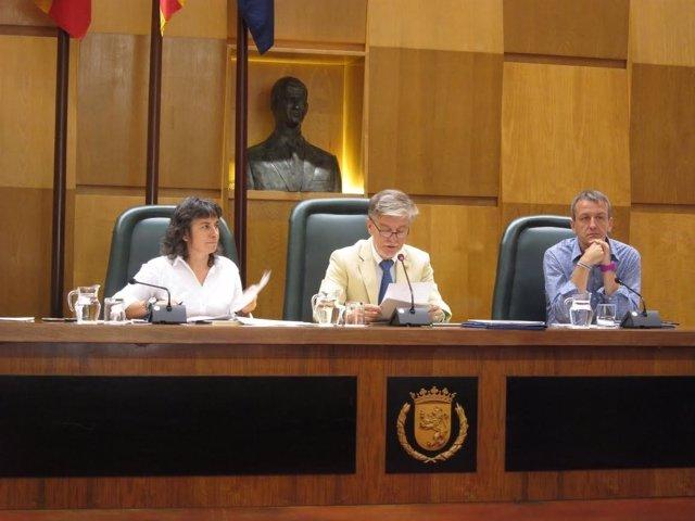 Pleno en el Ayuntamiento