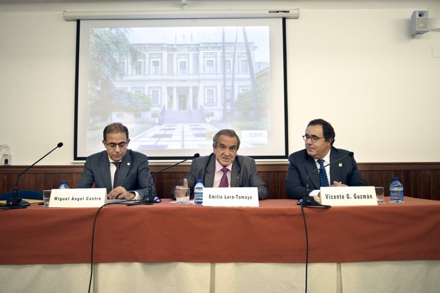 Miguel Ángel Castro, Emilio Lora-Tamayo y Vicente Guzmán