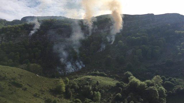 Incendio forestal en la comarca del Asón (Archivo)