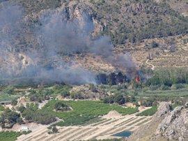 Controlado el incendio forestal en el paraje de El Menju, en el que han ardido 3 hectáreas de terreno