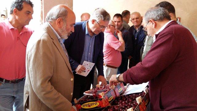 Olona visita el encuentro de profesionales del sector de la cereza en Calatayud.