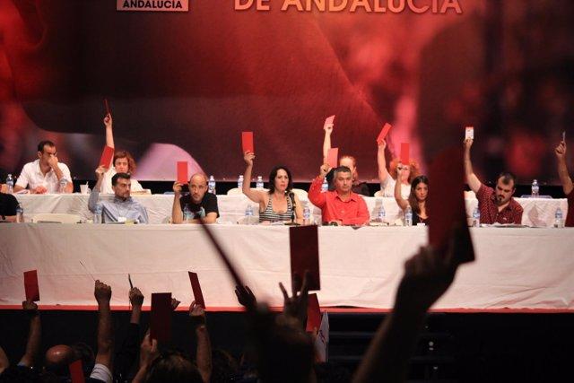 Votación en el Congreso del PCA