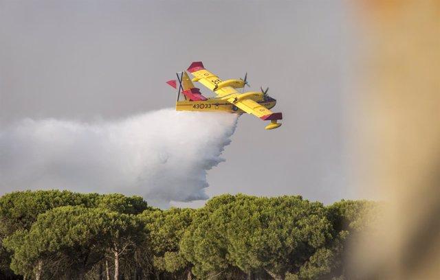 Efectivos en el incendio de Moguer (Huelva)