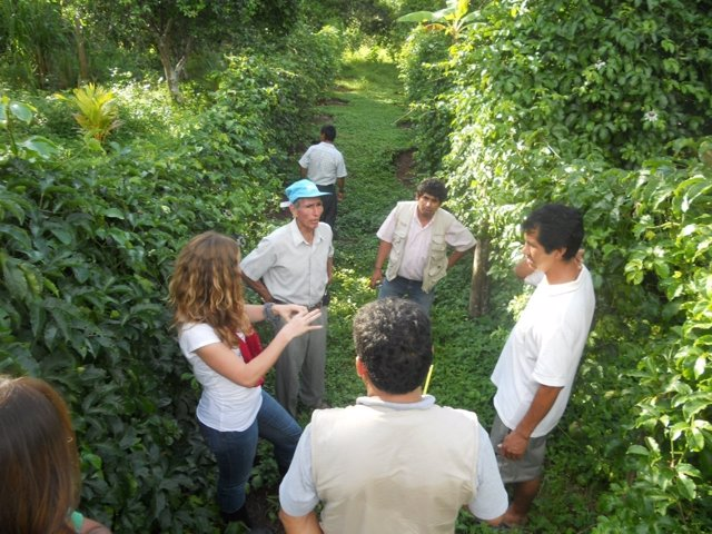 Productores de Perú