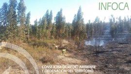 Declarado un incendio forestal en un paraje de El Cerro del Andévalo (Huelva)