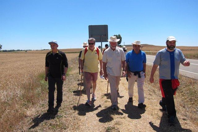 Palencia.- Méndez de Vigo realiza un tramo del Camino de Santiago