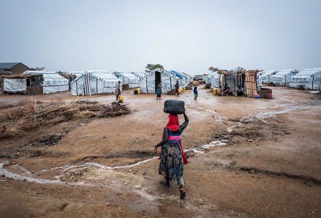 Una mujer tranporta agua hasta el campamento de Pulka, Nigeria.