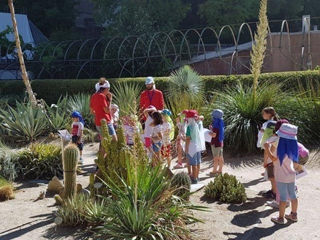 Campamentos botánico
