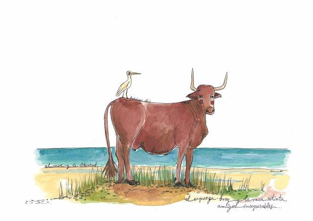 Acuarela vaca retinta