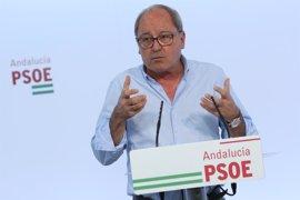 """PSOE-A: La negociación con Cs sobre sucesiones deben continuar para un acuerdo """"asumible"""" por todos"""