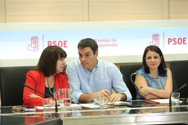 Sánchez preside la reunión de la Comisión Permanente de la Ejecutiva Federal