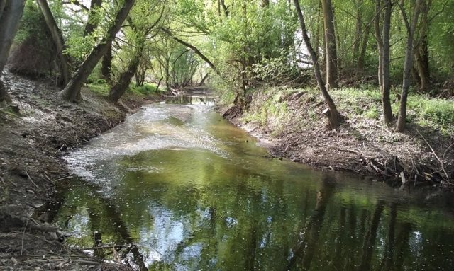 Río Pirón en Mozoncillo