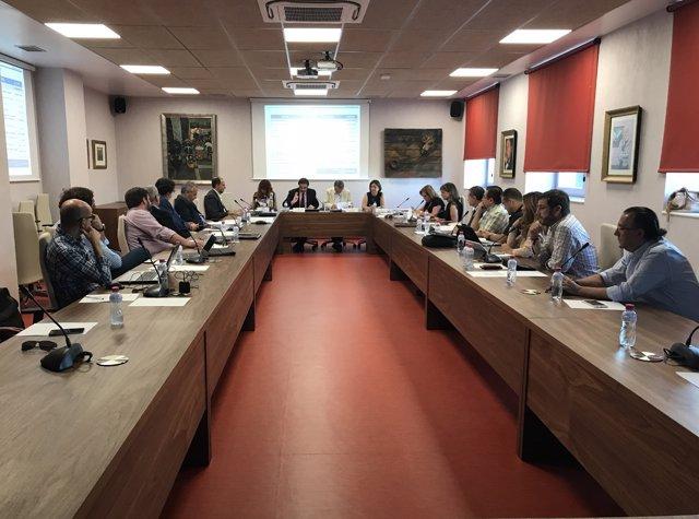 Reunión del Consejo Social de la UJA
