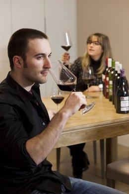 Rioja Alavesa, vino, cata