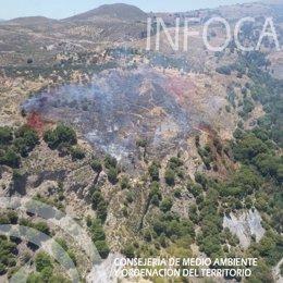 Incendio forestal en el Cortijo el Plantío de Órgiva
