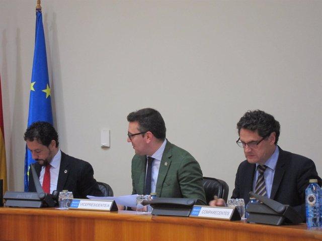 Fernández Couto En Su Comparecencia En Comisión