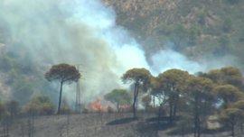 Un retén de 43 bomberos forestales y cinco autobombas siguen en la zona del incendio de Riotinto