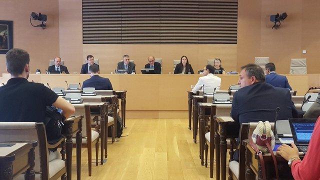 El inspector José Angel Fuentes Gago, en la comisión de investigación
