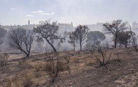 La Junta llevará a Fiscalía el resultado de la investigación del incendio de Moguer y se personará en la causa
