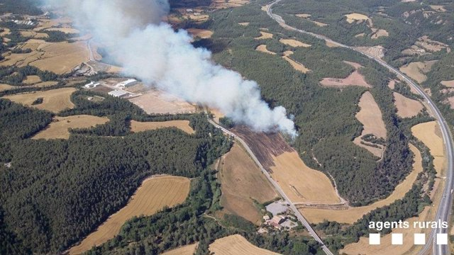 Incendio De Vegetación Agrícola En Avinyó (Barcelona)
