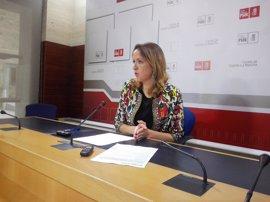 """PSOE dice que la posible enmienda a la totalidad de Podemos es """"el colmo de la locura"""""""