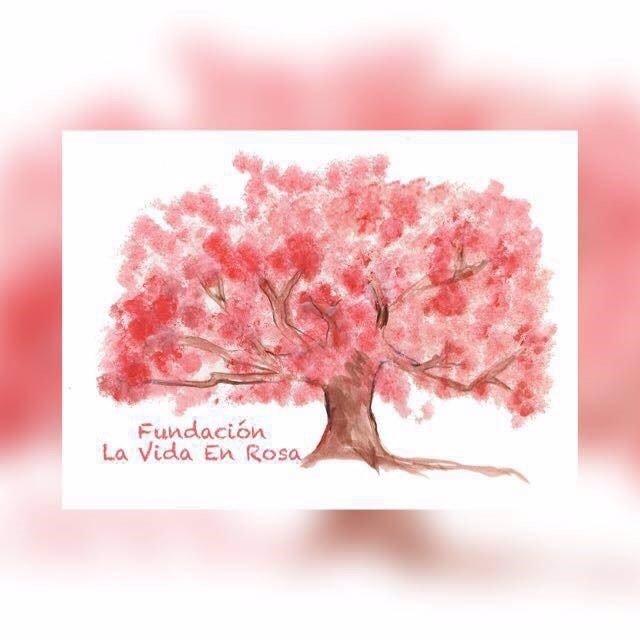 Fundación la Vida en Rosa