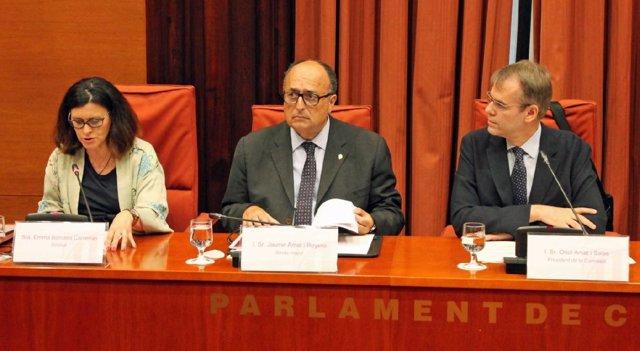El síndico mayor de la Sindicatura de Cuentas Jaume Amat