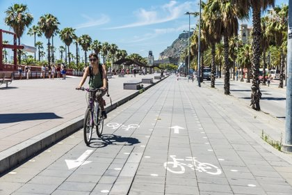 Bicicletas eléctricas, el nuevo medio de desplazamiento, eficiente y ecológico