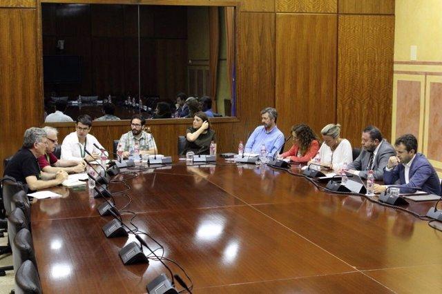 La delegación municipal (izda.) en la reunión con los grupos parlamentarios