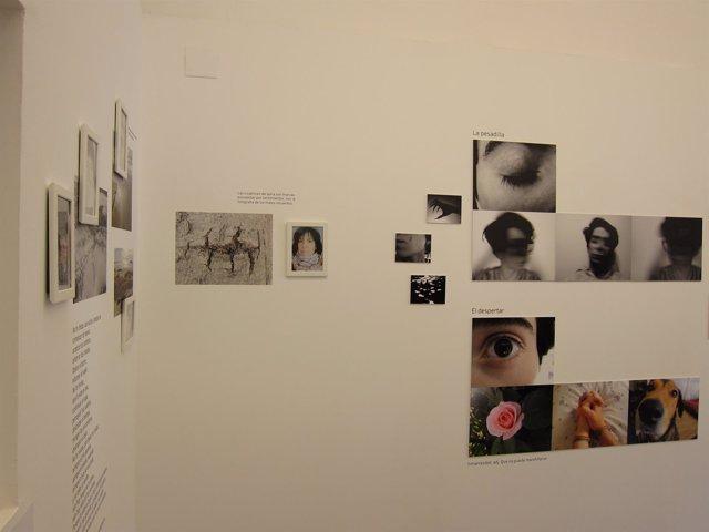 La exposición 'Material sensible' en Projekteria