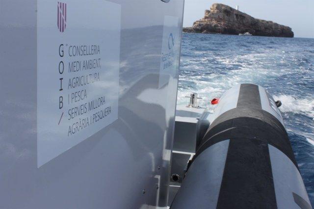 Embarcación de vigilancia para la reserva marina de El Toro