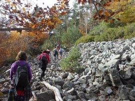 Medio Ambiente programa el sábado un paseo guiado por 'Los altos bosques del Iregua' en el Parque Sierra de Cebollera