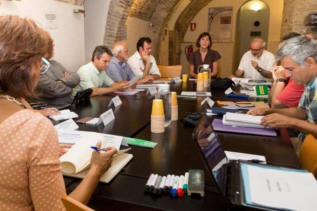 Reunión de la Mesa Técnica del Azud del Ebro