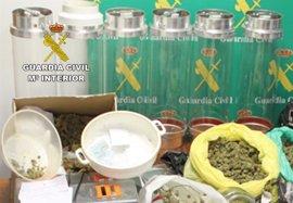 Guardia Civil desmantela un clan familiar dedicado al tráfico de marihuana y cocaína en Murcia