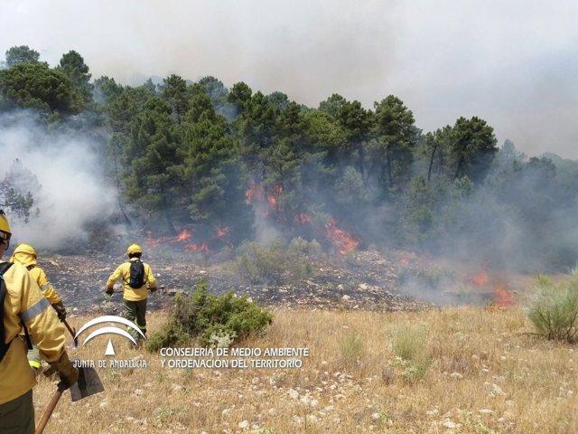 Incendio en la Sierra de Segura