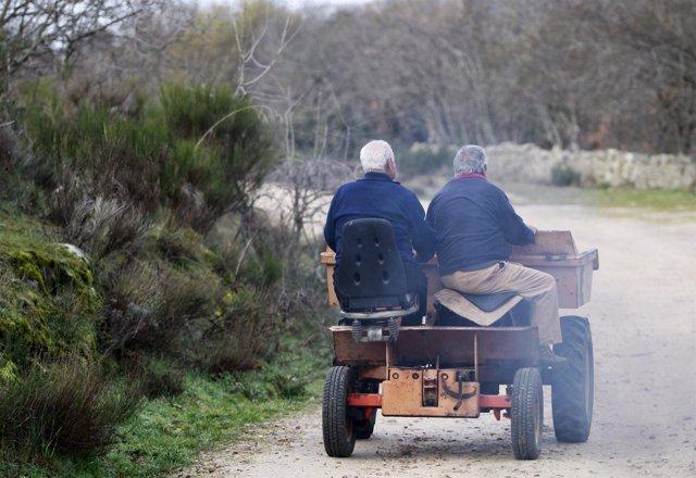 Conducir tractor, tractores, agricultor, agricultores, vida en el campo