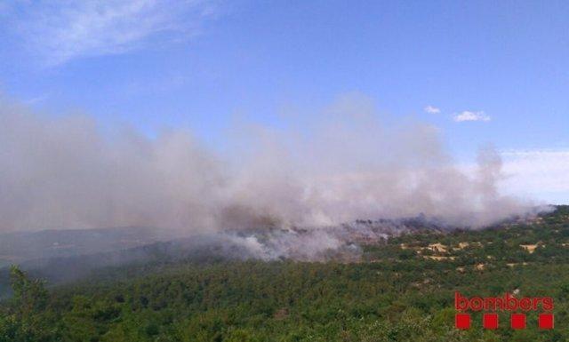 Incendio en Biosca (Lleida)