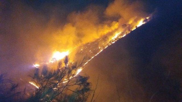 Incendio forestal en Cártama (Málaga)