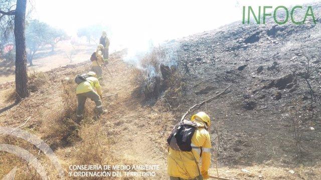 Incendio en El Cerro del Andévalo (Huelva)