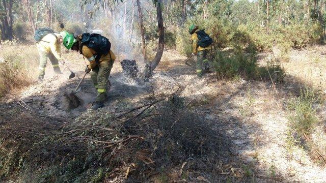 Incendio forestal en la provincia de Huelva