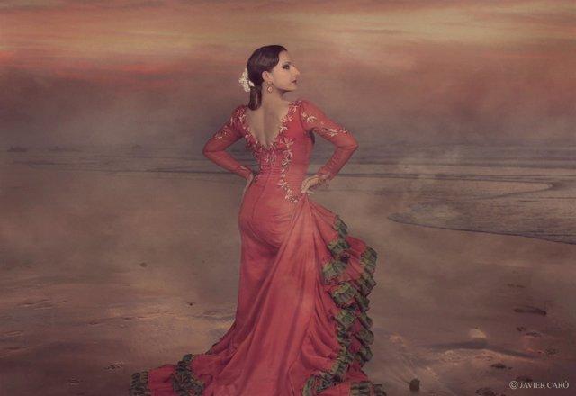 Luisa palicio málaga bienal arte flamenco diputación