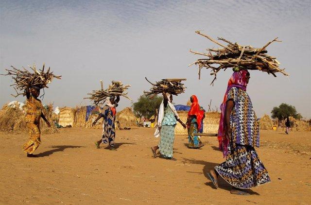 Mujeres con leña en Diffa (Níger)