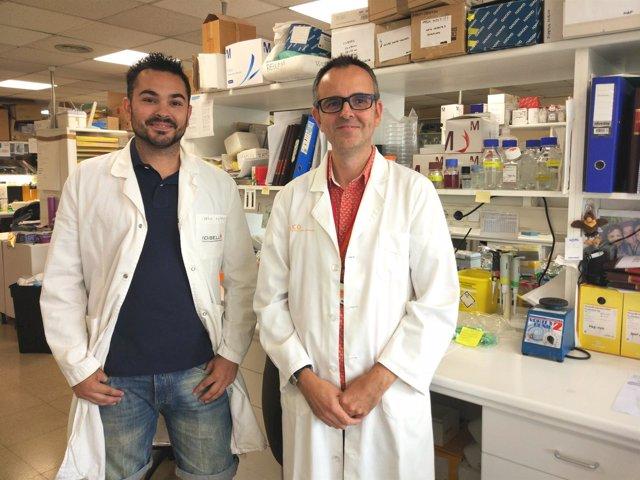Los investigadores S.Gonçalves y D.García-Molleví