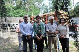 """El BNG pide a la Xunta """"un acuerdo de país"""" para cambiar la política forestal"""