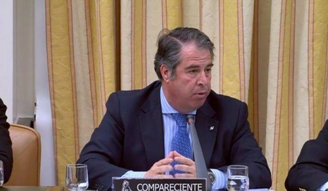 Gregorio Serrano, director de la DGT, en el Congreso