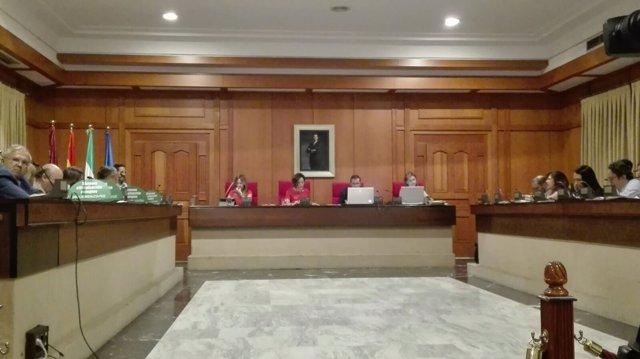 Un momento del Pleno, con los ediles del PP (izda.) aún en el mismo