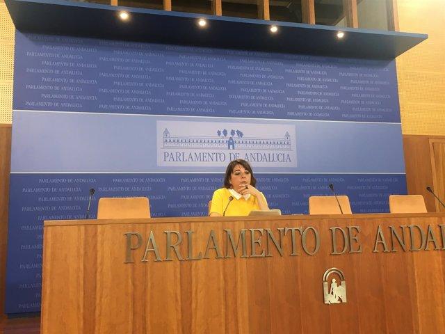 La portavoz adjunta del Grupo Parlamentario de IULV-CA, Elena Cortés