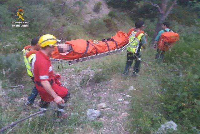 León: Imagen Del Rescate