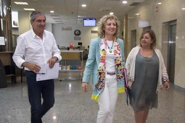 Ruiz Moya, Díaz Tezanos y Domingo