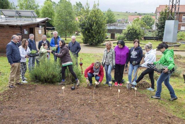 Huertas municipales sostenibles